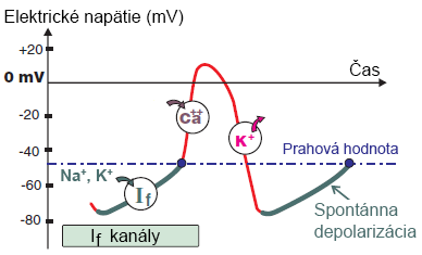 SA node action potential and If (funny current)