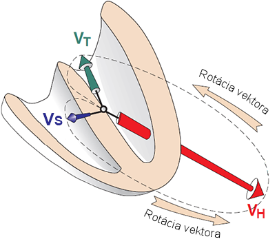 Resultant heart vectors, direction and magnitude in time - vectorcardiogram