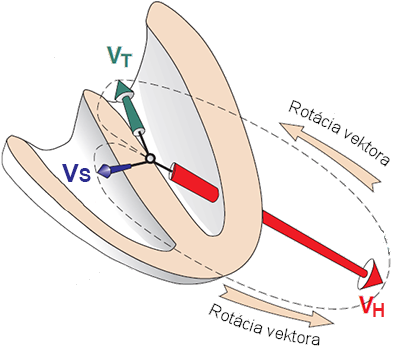 Summary of the frontal plane heart vectors directions