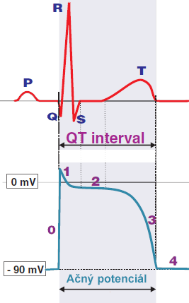 ecg qt interval represents the duration from depolarization to repolarization of the ventricles. Is duration of action potential