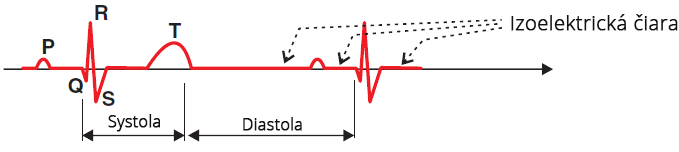 ECG of normal healthy, zero voltage line