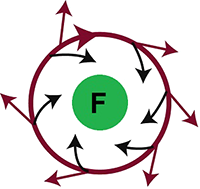 Leading circle reentry, Functional Reentry
