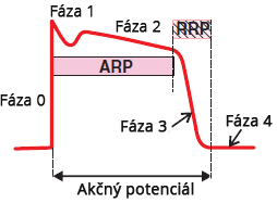 Action potential, Absolute and Relative Refractory Periods (ARP, RRP)